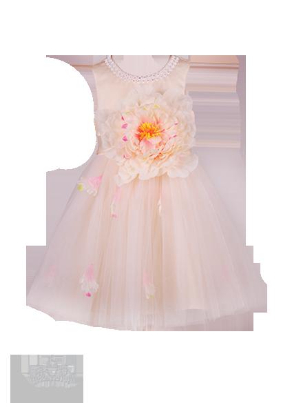 Фото: Красивое детское платье нежного цвета (артикул 3096-beige)